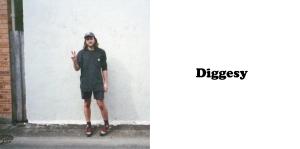 Diggesy Label
